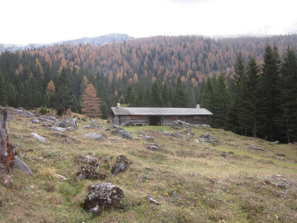 Malga Vallesinella Alta